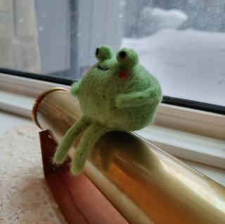 froggie lobby 's Avatar