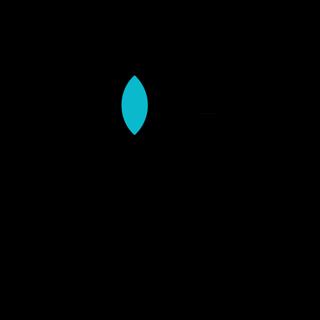 ekini swimwear's Avatar