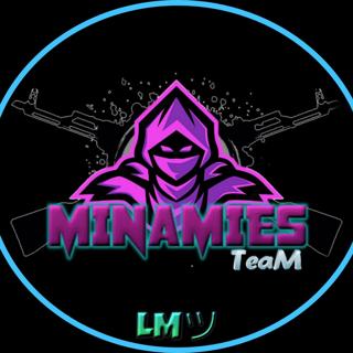 Minamies Team's Avatar